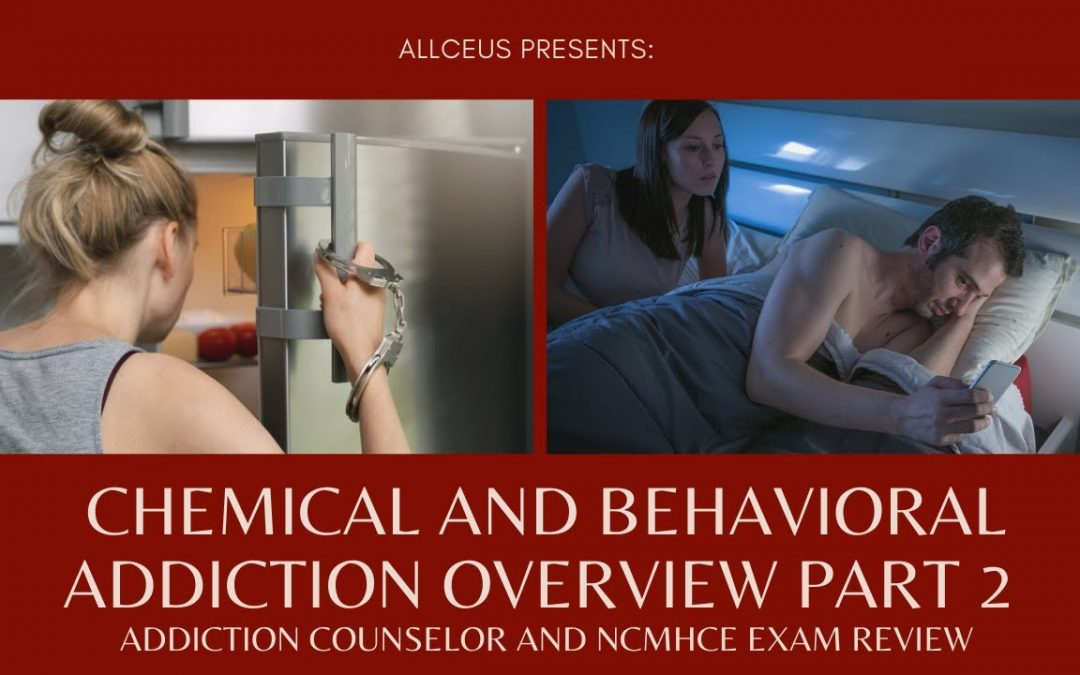 Chemical and Behavioral Addiction Overview Part 2 | Addiction Counselor and NCMHCE Test Prep